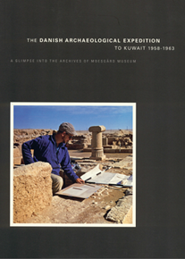 الصورة: THE DANISH ARCHAELOGICAL EXPEDITION